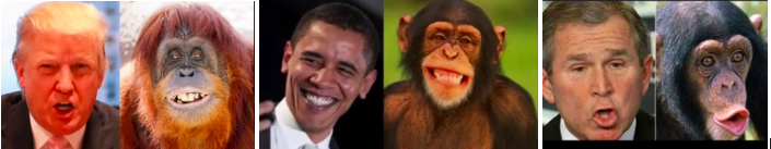 president monkey meme collage